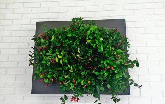 Roślinność i jej aktywny udział w biurowej przestrzeni