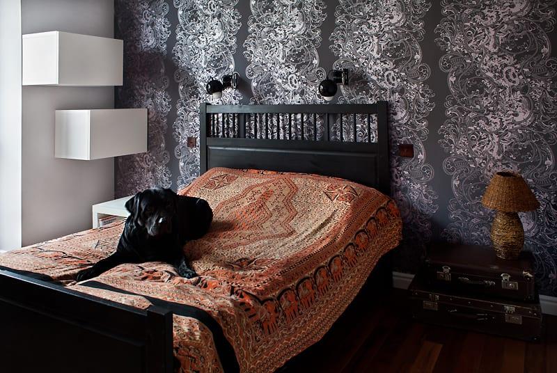 Pies na łóżku w sypialni