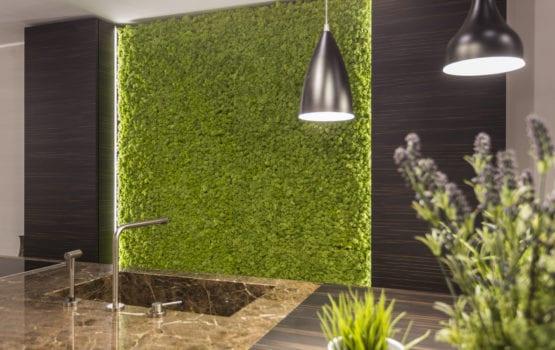Moss Trend: mech czyli ekologiczna dekoracja ścian