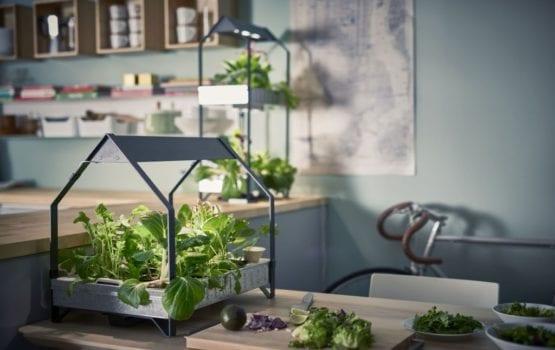 Domowy ogródek przez cały rok z nową kolekcją IKEA