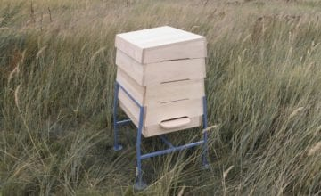 Sanatorium dla pszczół
