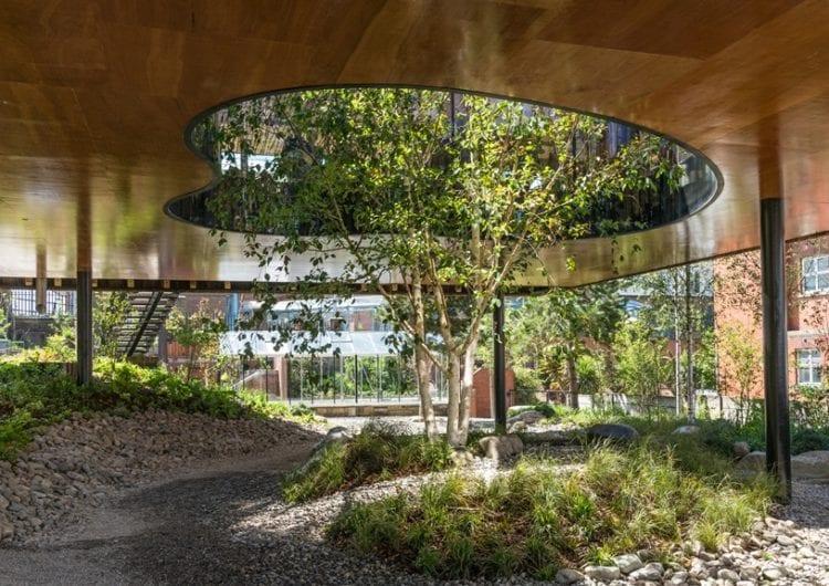 Kojąca moc drewna w Maggie's Centre w Oldham