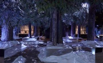 Śnieżny las czy restauracja?