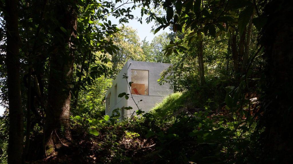 dom kostka wśród zieleni