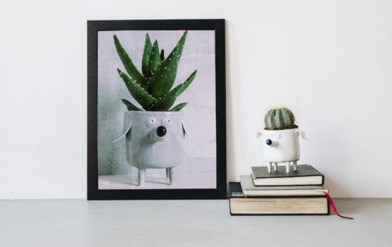 Lamabo – radosna ceramika w pastelowych barwach