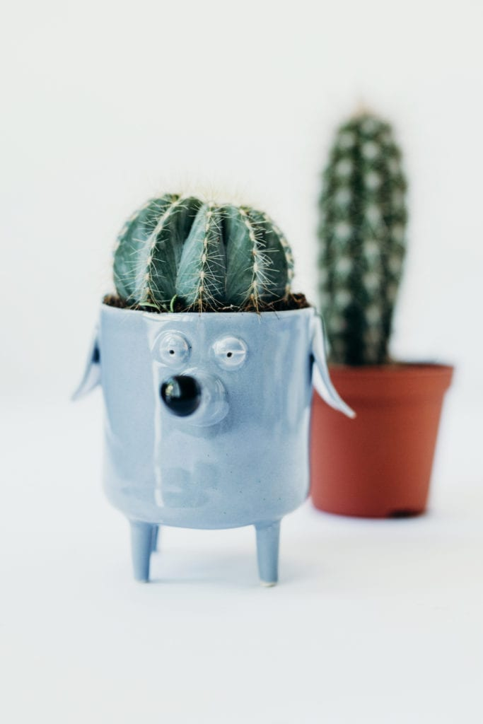 Niebieska doniczka w kształcie psa od marki Lamabo