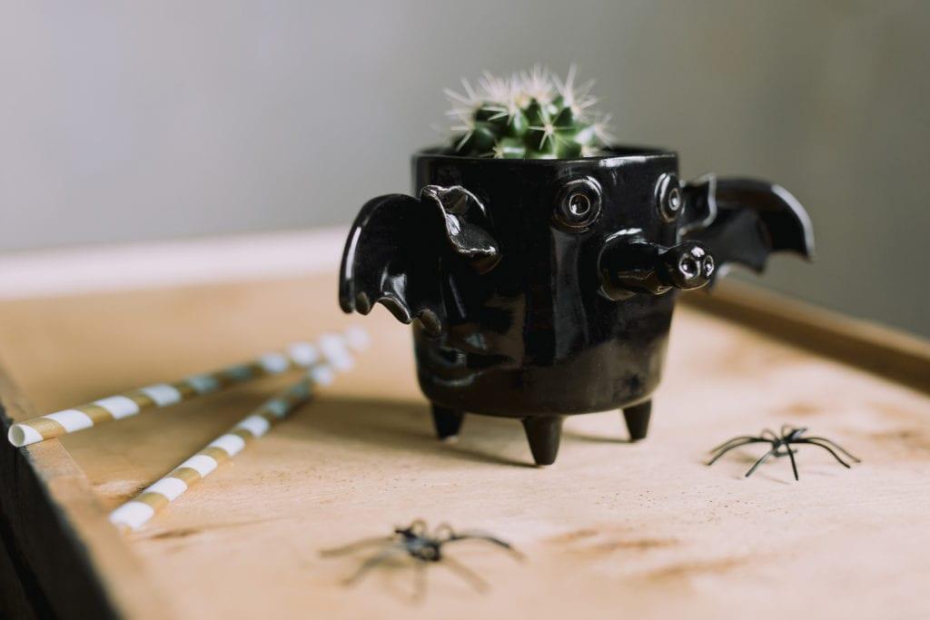 Czarny kubek z ceramiki w kształcie nietoperza stojący na stole wśród pająków