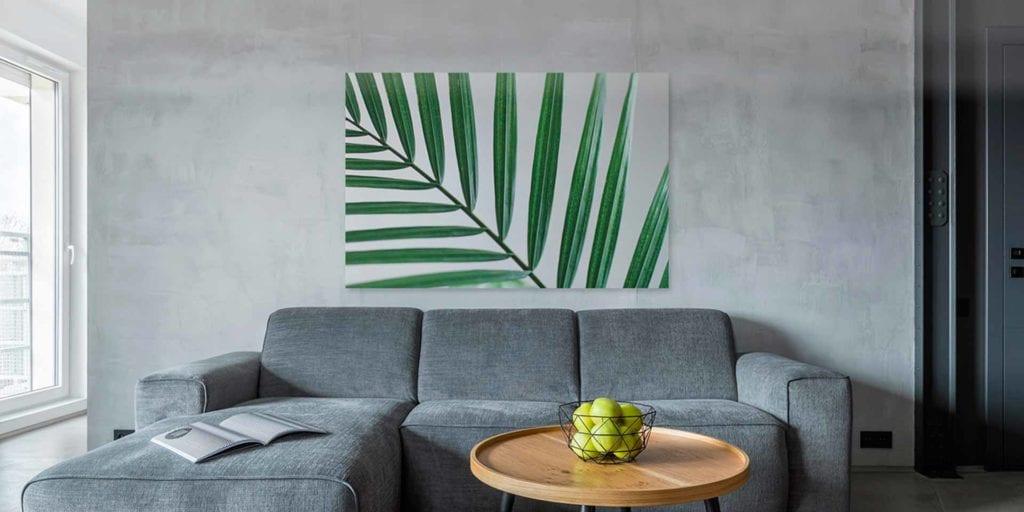 Vaku-dsgn obrazy drukowane na płótnie - obraz z zielonym liściem