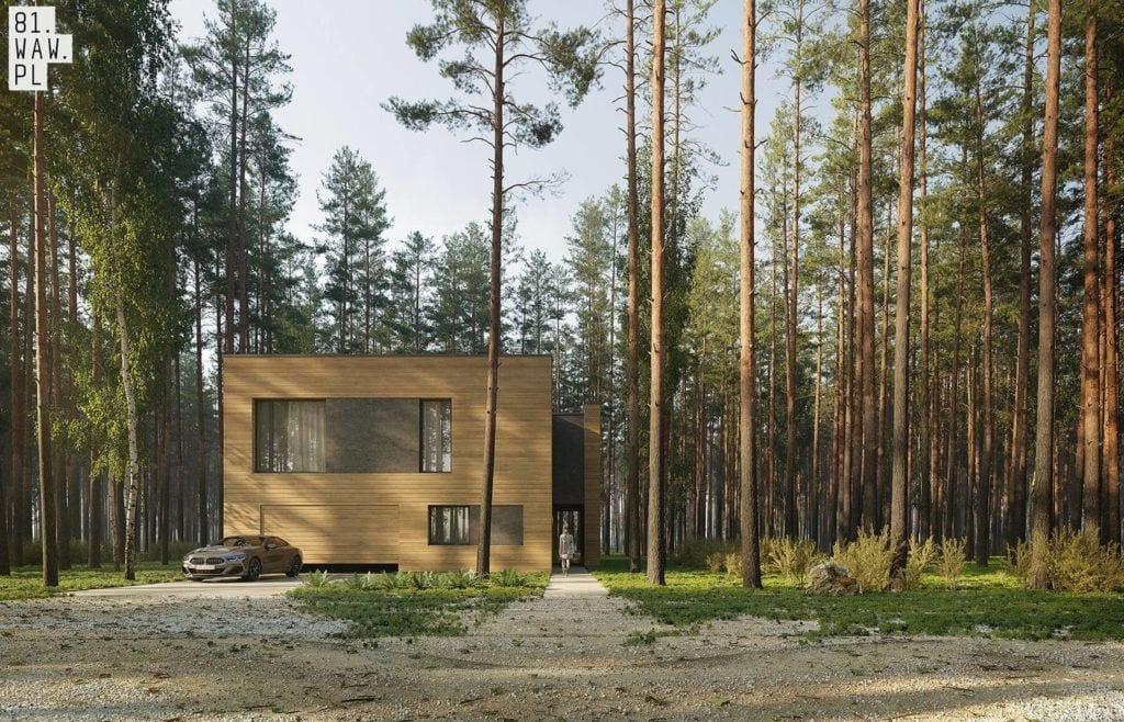 Dom Pień - minimalistyczny projekt ukryty w lesie projektu 81.waw.pl