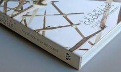 Wrocławskie Muzeum Architektury wydaje monografię Ludwiki Ogorzelec