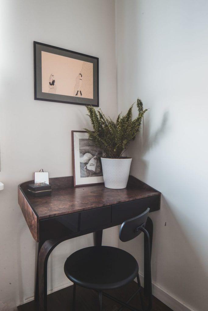 Przytulny apartament na Żoliborzu - kwiat stojący w doniczce na biurku