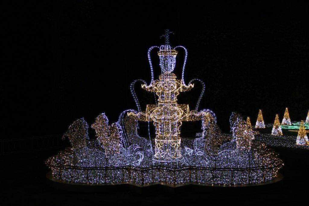 Świetlny spektakl w ogrodach Muzeum Pałacu Króla Jana III - Królewski Ogród Światła - Ogród Różany