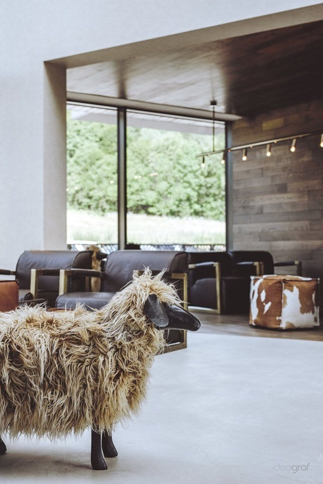 Lake Hill Resort & Spa w Sosnowce koło Karpacza - projekt Ideograf