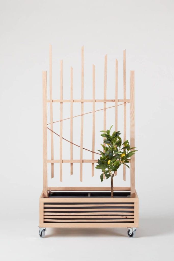Wystarczą dwie deski czerwonego dębu - projekt AHEC i Rycotewood Furniture - Karina Paberza