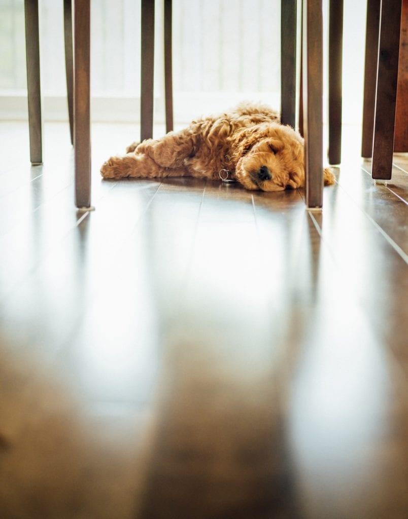 Nowoczesne ogrzewanie podłogowe do domu i mieszkania - tim foster - unsplash