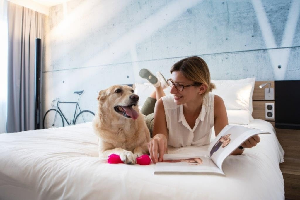 Novotel Wrocław City - filmowy hotel w nowym obliczu - kobieta z psem w pokoju hotelowym