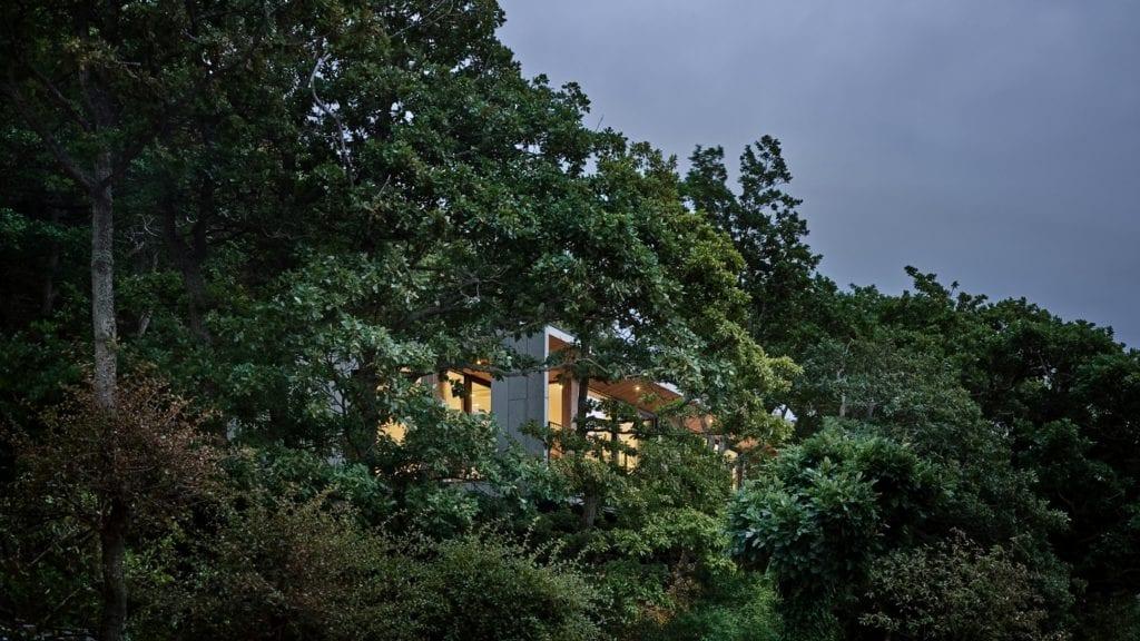 Sommarhus Solviken projektu Johan Sundberg Arkitektur - dom w otoczeniu drzew