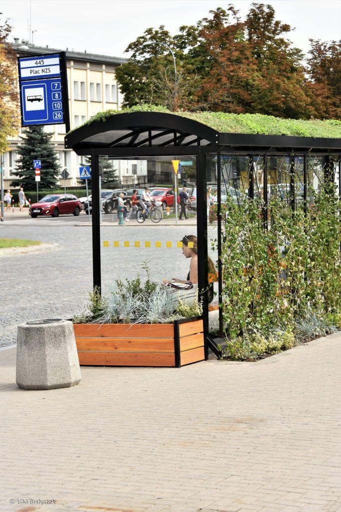 Zielony przystanek w Białymstoku