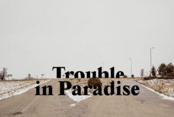 Trouble in Paradise – online meetings