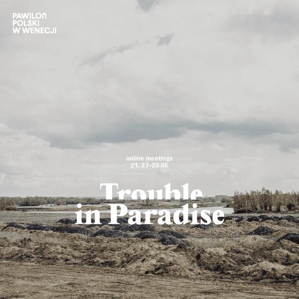 Trouble in Paradise – online meetings
