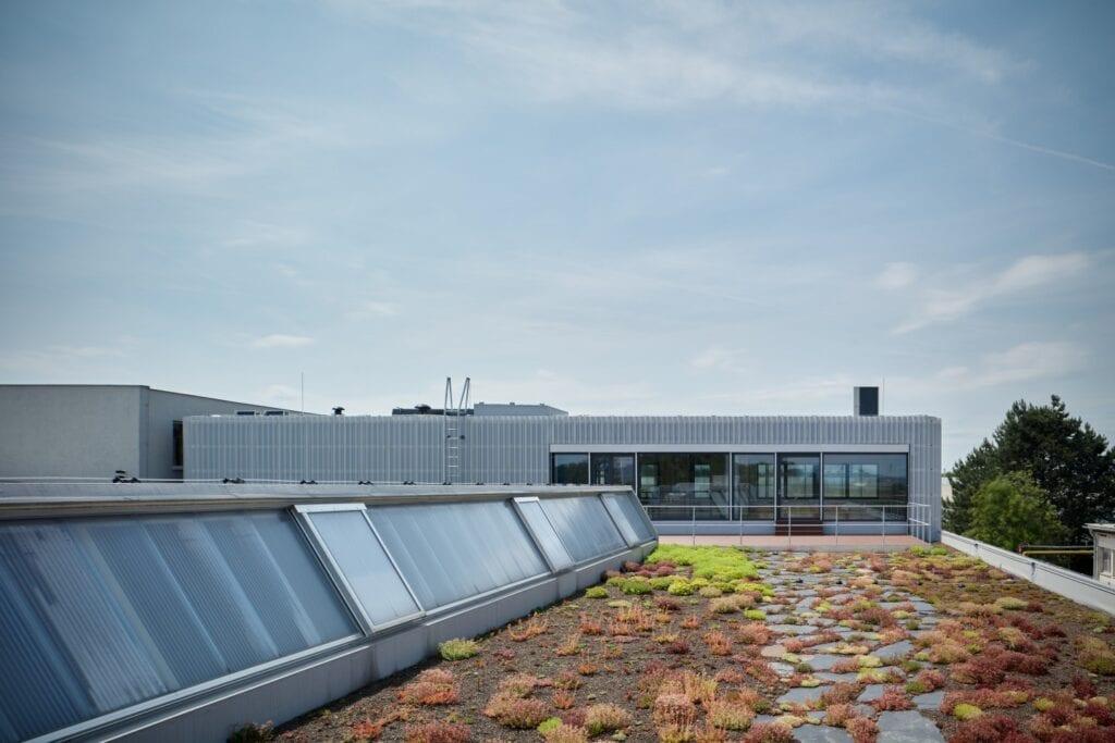Ellement Architects i projekt dla rodzinnej firmy Pilana Karbid