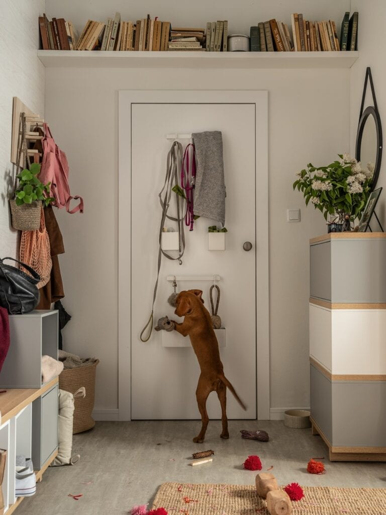 Jesienne sprzątanie - sprytne sposoby na przechowywanie