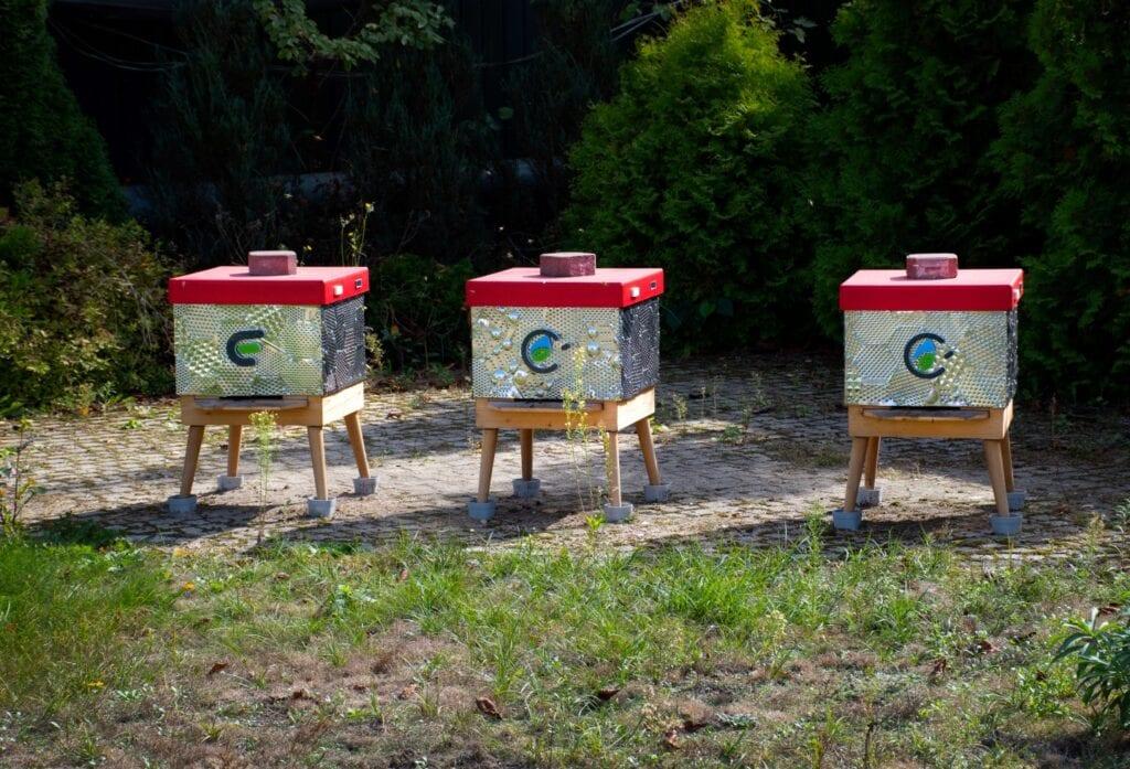 Tomasz Waśkiewicz i ule z recyklingu - Pszczoły wracają do miast!