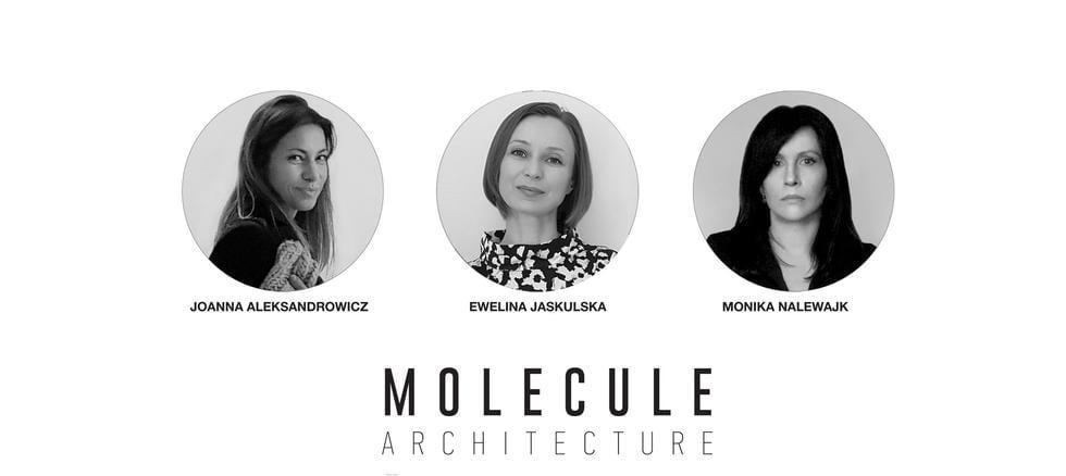 """""""Architekci grają dla WOŚP"""" - Molecule Architecture - Projekty parteru elewacji frontowej"""