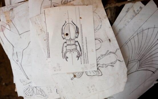 PAP DECO – kiedy rzemieślnik zamienia się w artystę