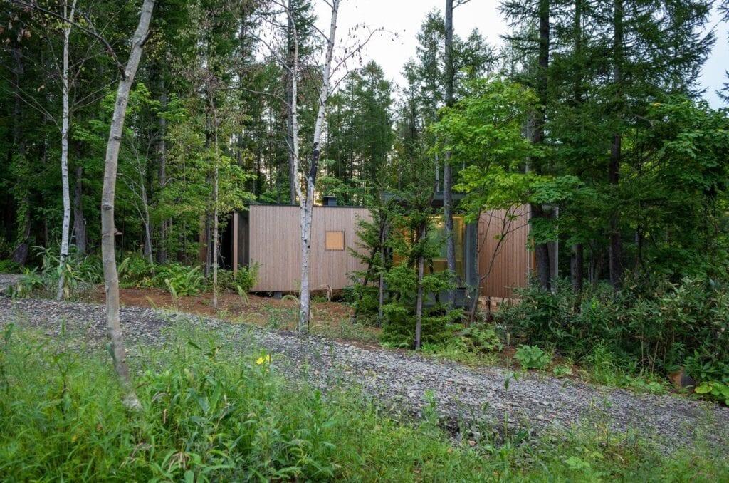 Dom w kształcie gałęzi projektu Florian Busch Architects