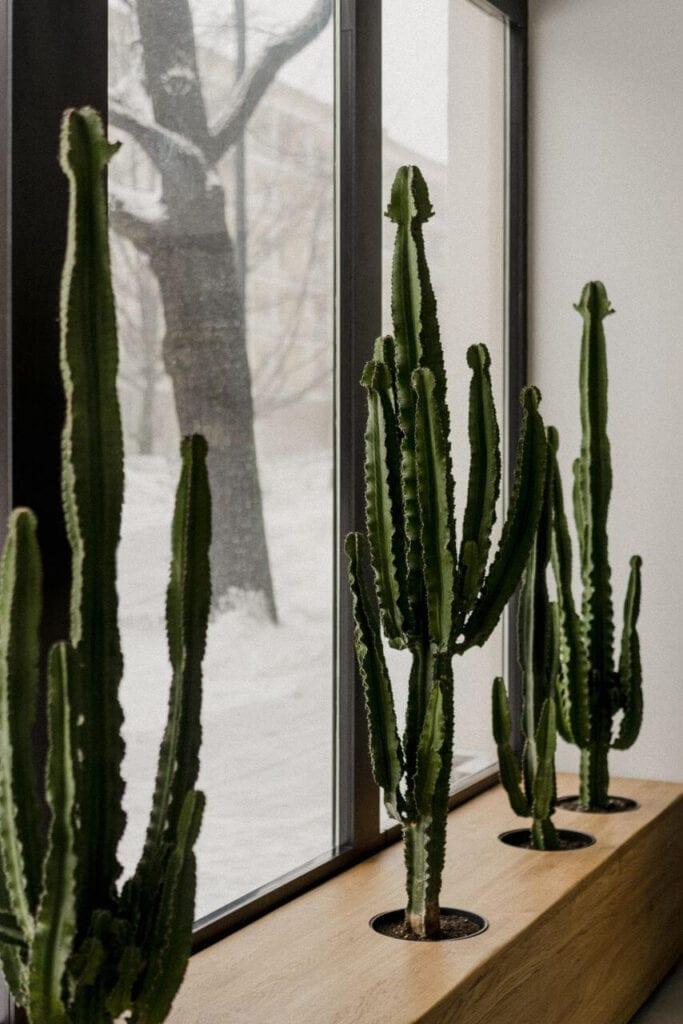 Butik Muuv na Kruczej - projekt pracowni Five Cell- foto Pion Studio