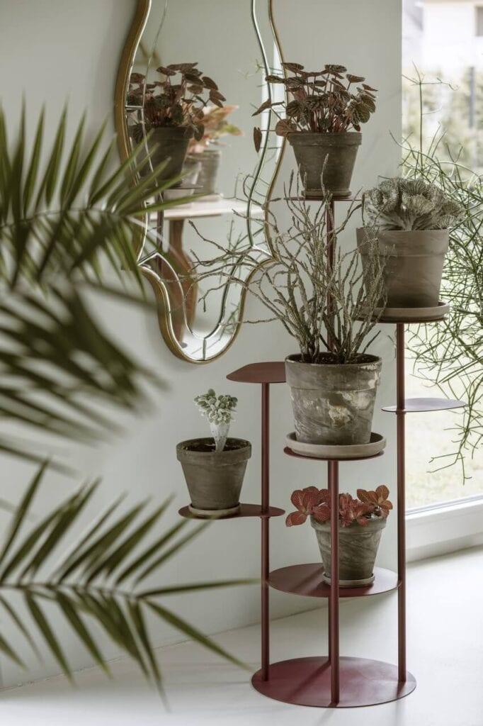 TILLO - kolekcja podłogowych kwietników na kilka roślin od bujnie - foto Yassen Hristov