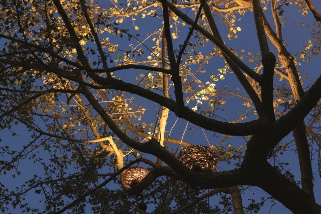 Oświetlenie [LND] - natura w nowym świetle