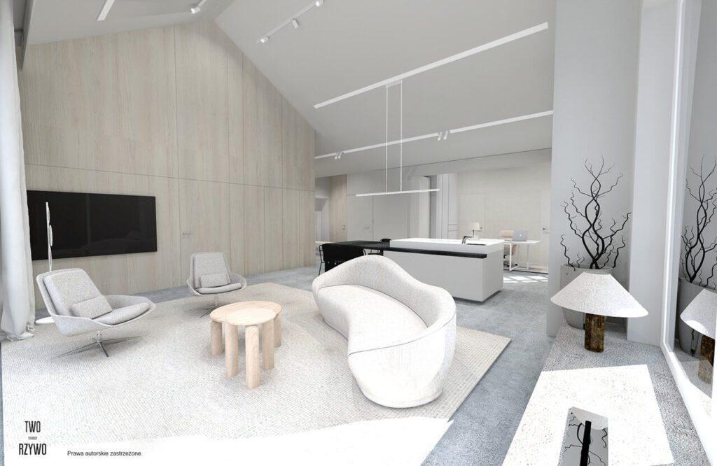 Projekt domu, który pojawia się i znika - projekt TWORZYWO STUDIO