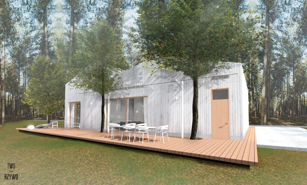 Projekt domu dla wielopokoleniowej rodziny - projekt TWORZYWO STUDIO