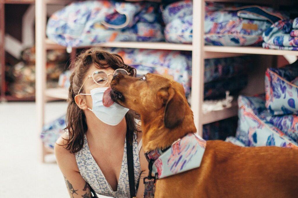 Psyjaciele - marka stworzona z miłości do zwierząt