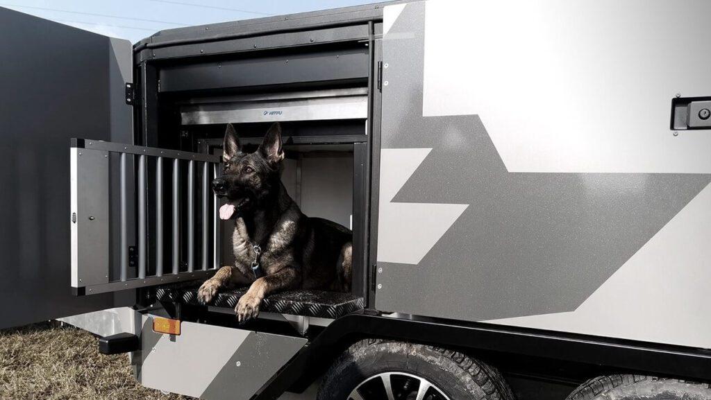 Wyjątkowa przyczepa do przewozu psów - projekt Metbox, Tenka i Latko