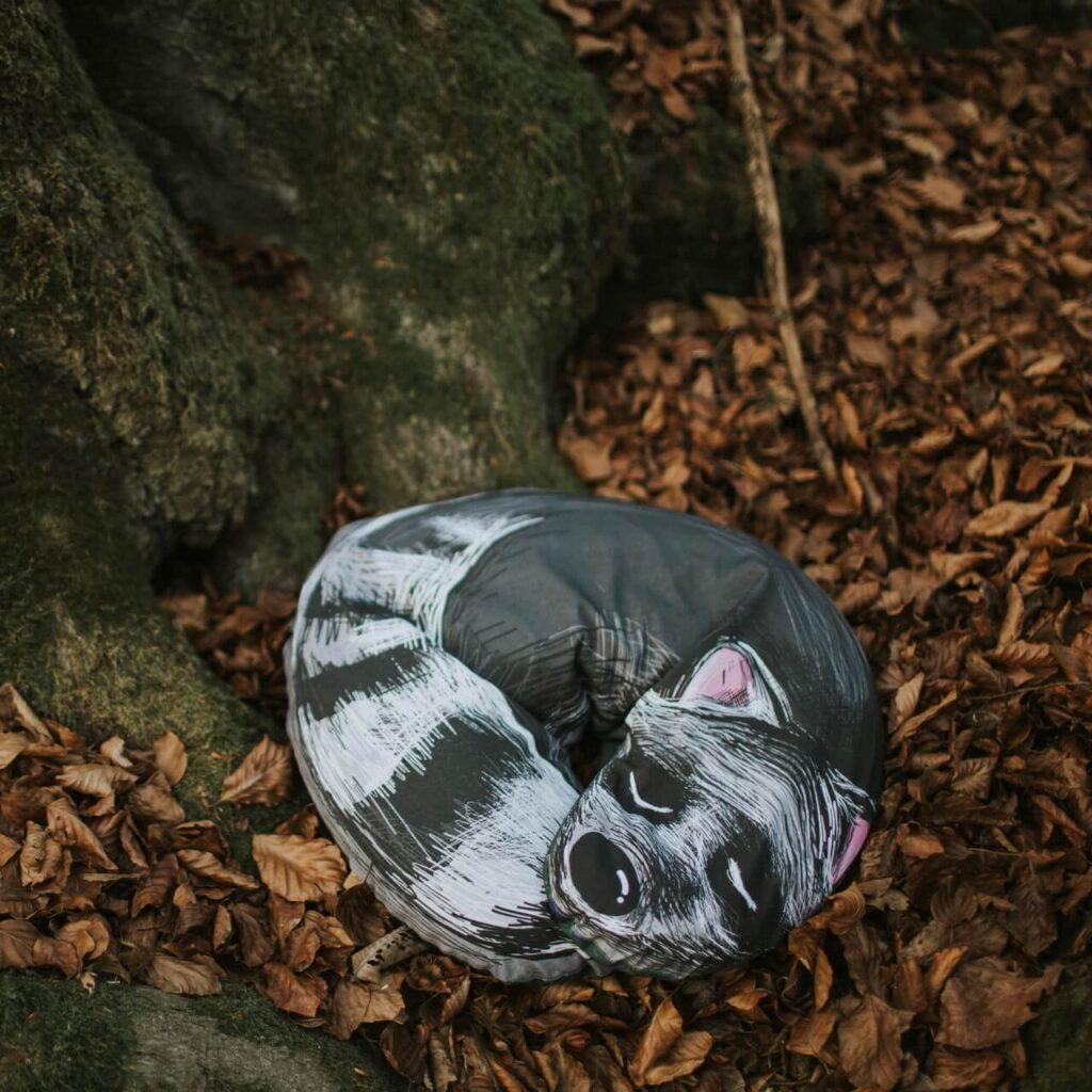 Forest Loops - produkty zdrowe z natury - poduszka z łuską gryki - szop pracz