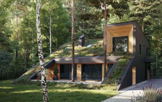 Hill House – domek z zielonym dachem od Snegiri Architects
